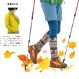 雑誌ランドネ11月号アイコン
